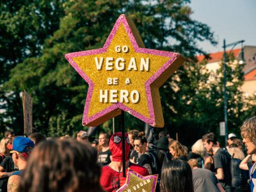 Aktivismus beim Animal Rights March Berlin