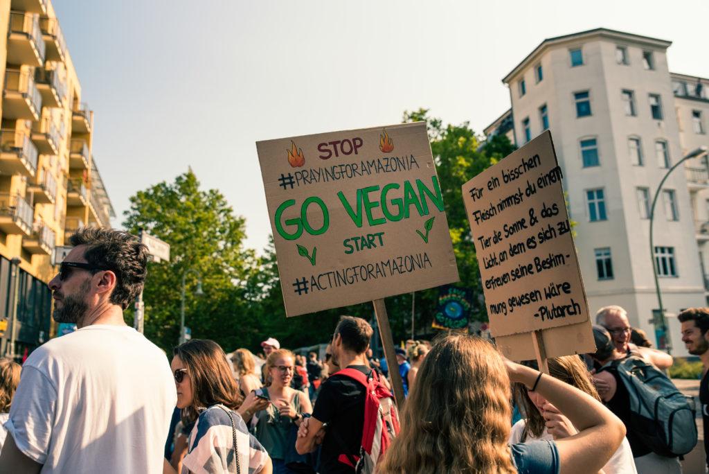 Schilder beim Klimastreik - Auch die Ernährung hat Einfluss auf das Klima