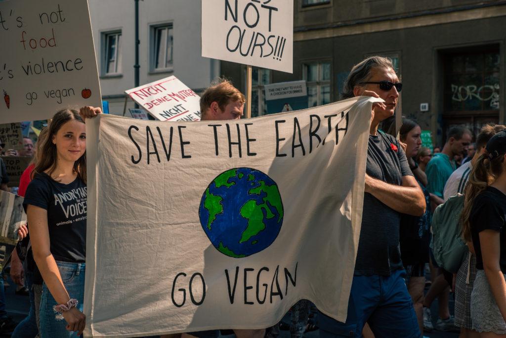 Save the earth - Go Vegan - Botschaft beim Klimastreik